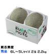 熊本県(八代産) 『肥後グリーン』 特大玉 5L~6Lサイズ  2玉入り(約5.0kg) (5月下旬より発送)