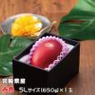 (送料無料)  宮崎県産 JA宮崎 『完熟マンゴー』 (赤秀)  特大玉 4Lサイズ 1玉入り  化粧箱入り