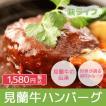 レトルト 萩産「見蘭牛」100% 見蘭牛ハンバーグ2P