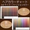 ヘアカラーチャート(ファッションカラー・おしゃれ染め)|A4サイズ両面|表:仕上がりのイメージ|裏:カラー剤の色のイメージ|日本語・英語併記