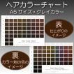 ヘアカラーチャート(グレイカラー・白髪染め)|A5サイズ両面|表:仕上がりのイメージ|裏:カラー剤の色のイメージ