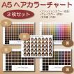 ヘアカラーチャート3枚5種セット|A5|色見本|髪色|おしゃれ染め|白髪染め|ファッションカラー|グレイカラー|ヘアカラーリング|髪染め