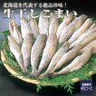 生干しこまい(9〜11尾)  北海道産の絶品珍味