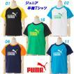 半袖Tシャツ/プーマ(PUMA)ジュニア コットン半袖Tシャツ(591895)