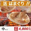 桑名 蓄養 はまぐり 中サイズ(600g)【送料無料】中国産 約40g-50gの貝(約13粒前後) はまぐりの 丸元水産 養殖 直送 焼きハマグリ 浜焼き お吸い物 お食い初め