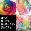 レインボーフラワー (3種ミックス 3・3・3) の花束(かすみ草入り)【20094】