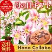 母の日プレゼント アレンジメント 花とスイーツ ピック付き鉢植え (百合 ユリ ゆり)