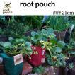 root pouch (ルーツポーチ) 直径21cm <宅配便でお届け> 持ち手の付いた不織布ポット 選べる5色 #2