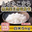 30年産米 秋田県産 あきたこまち 無農薬自然乾燥 白米 5kg 農家直送