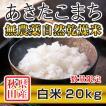 【新米予約】 白米 令和3年産新米 秋田県産 あきたこまち 無農薬自然乾燥米 20kg 農家直送