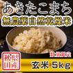 【新米予約】 玄米 令和3年産新米 秋田県産 あきたこまち 無農薬自然乾燥米 5kg 農家直送