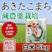 30年産米 秋田県産 あきたこまち 減農薬栽培 白米 5kg 農家直送