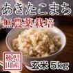 玄米 令和3年産新米 秋田県産 あきたこまち 無農薬栽培米 5kg 農家直送