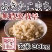 玄米 令和3年産新米 秋田県産あきたこまち 無農薬栽培米 20kg 農家直送