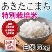 30年産米 秋田県産 あきたこまち 特別栽培 白米 5kg  慣行栽培比 農薬8割減 化学肥料9割減  農家直送