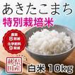 令和2年産米 秋田県産 あきたこまち 特別栽培 白米 10kg 農薬8割減 化学肥料9割減 慣行栽培比 農家直送