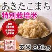 令和2年産米 秋田県産 あきたこまち 特別栽培 玄米 20kg 農薬8割減 化学肥料9割減 慣行栽培比 農家直送