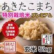 令和2年産米 秋田県産 あきたこまち 特別栽培プレミアム 玄米 5kg 農薬8割減 化学肥料9割減 慣行栽培比 農家直送