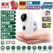 防犯カメラ 5秒でできる! 超小型 自動録画 録音 microSDカード付属 充電池式 【安心の2年保証】