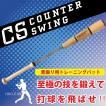 カウンタースイング 野球 素振り用トレーニングバット 送料無料
