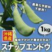 スナップエンドウ(スナックエンドウ) 沖縄県産 約1kg  農薬化学肥料不使用!