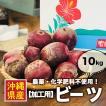 【加工用/B品】ビーツ 約10kg 沖縄県産 農薬・化学肥料不使用!サラダ ボルシチ ジュースにもオススメ