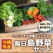 毎日島野菜セット【ハッピーモア市場オリジナル!】