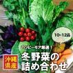 【冬限定!】【送料無料】沖縄の冬野菜詰合せ