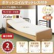(組立設置) 介護ベッド シンプル電動ベッド ポケットコイルマットレス付き 2モーター