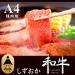 しずおか和牛 焼肉用 500g【SE1-003】