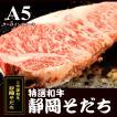 静岡そだち A5 サーロインステーキ 300g×2【SE1-009】