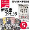 招き猫 ハンカチ セット コシヒカリ 5kg 新潟県産コシヒカリ 平成30年産 米 白米 送料無料