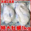 【送料無料】広島牡蠣・特大サイズ1kg 1kg中に30粒前後入ってボリューム満点
