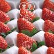 いちご 送料無料(一部地域を除く) Lサイズ 15粒(約270g) 山形県産 雪芽いちご おとめ心 とちおとめ もういっこ イチゴ 苺 ギフト