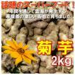 菊芋 生 土つき脱気密封パック 2kg キクイモ 農薬化学肥料不使用 国産 岡山備中産 得トクセール
