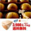 パルミジャーノ レッジャーノ24ヶ月熟成 ザネッティ社 チーズ