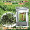 熊本県菊陽産にんじん緑葉茶(30g入)
