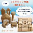 白くまツインズ  積み木 セット わかふじクラフト   みんななかよしシリーズ シロクマ  日本製 木製 出産祝い 木のおもちゃ