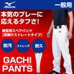 ミズノ MIZUNO 野球 ウェア 練習着 ユニフォームパンツ 練習用 ユニフォーム パンツ 足掛けストレート メンズ 12JD6F6501