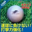 フィールドフォース FIELDFORCE 野球 トレーニングボール インパクトパワーボール Aサイズ 400g FIMP-720A