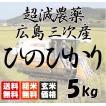 新米 平成28年産 送料無料 広島三次産  超減農薬 ひのひかり 玄米 5kg 平成二十八年産