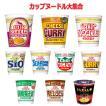 新着 日清食品 カップヌードルレギュラーサイズ 大集合 20個セット 関東圏送料無料