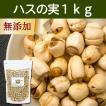 ハスの実1kg 蓮の実 はすの実 アルカロイド 薬膳茶の材料にも 業務用 蓮肉 ハス肉