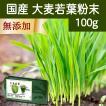 国産・大麦若葉粉末100g 無添加 100% 青汁スムージーに 野菜不足の方に 無農薬