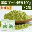 国産ゴーヤ粉末100g×2個 沖縄産 青汁 サプリメント 無添加 まるごと 丸ごと 100% ゴーヤー パウダー 苦瓜 にがうり ジュースに