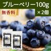 ブルーベリー100g×2個 ドライフルーツ