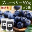 ブルーベリー500g×2個 ドライフルーツ チャック付き袋
