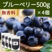 ブルーベリー500g×4個 ドライフルーツ チャック付き袋