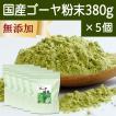 国産ゴーヤ粉末 380g×5個 沖縄産 青汁 サプリメント 無添加 まるごと 丸ごと 100% ゴーヤー パウダー 苦瓜 にがうり ジュースに