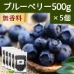 ブルーベリー500g×5個 ドライフルーツ チャック付き袋